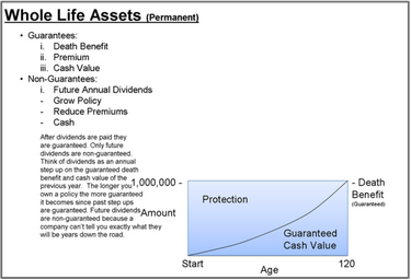 Michael Fliegelman of www.whywholelife.com and www.swanwealth.com illustrates how whole life insurance works with 3 graphs.